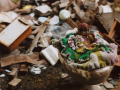 film photograph weird creepy doll toilet bowl painted crochet clothing rubbish heap garbage pile offering shrine strange bizarre surreal post office gary