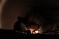 dark shadowy photograph man boy sitting brown cardboard box on bed darkness flash light streaky portrait grainy hidden face mysterious strange weird pajamas black white