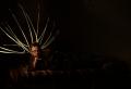 light portrait digital photograph dark light chiaroscuro streak contrast line bright young man fair robe silk brown mauve pattern lounging resting glasses hand chin head bed lying pose model halo