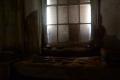 abandoned building  window