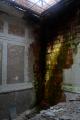 abandoned building moss bricks