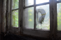 window pane old graffiti drip