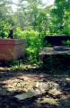 film photography gravesite cross sunshine
