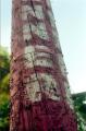 signpost film photography staples texture