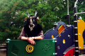 film photograph portrait playground man goat mask creepy