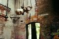 abandoned building urbex factory mannequin head hanging creepy