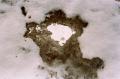 film photograph snow winter ice slush dirty texture macro closeup texture