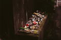 film photograph trash bottles cans street trough still life