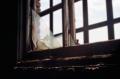 film photograph abandoned building urbex broken window frame glass
