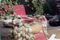 film photograph reflection window shop chair armchair bacteria moss stones strange