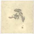 etching intaglio printmaking drawing snow dead bird feet