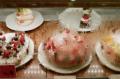 film photograph glass window counter cakes bakery strawberry chocolate cream condensation vapor