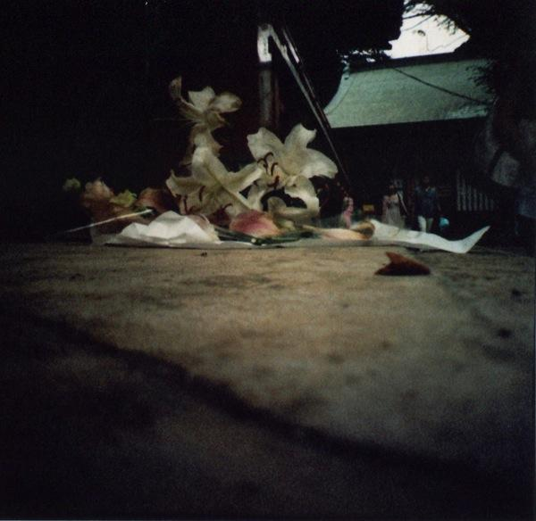 film photograph fallen flowers lilies temple dark lomography contrast light blur film lomography japan japanese asia verdigris green sad muted nature trash unwanted