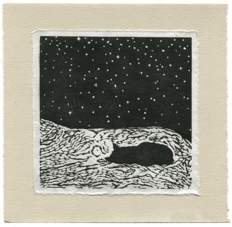 cat printmaking art black and white somerset paper star starry night sky bed sleeping kitty black peaceful