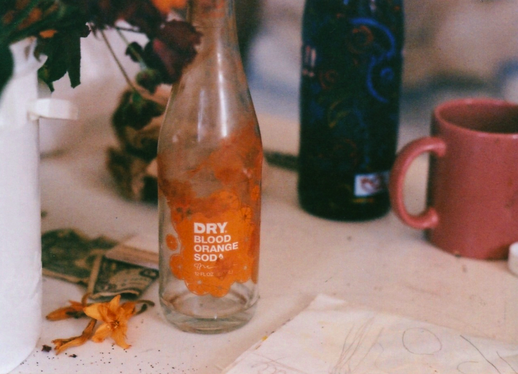 film photograph glass bottle dry blood orange soda coffee mug mauve pink wine bottle blue flower blossom wilted money dollar bill still life
