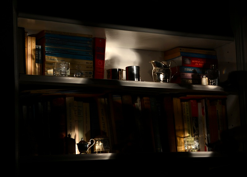 light portrait dark shadow lighting blur flash highlight chiaroscuro contrast spotlight bookshelf silver knickknacks miniature little pitcher cigarette holder glass reflection votive bougie holder cup trinket shiny