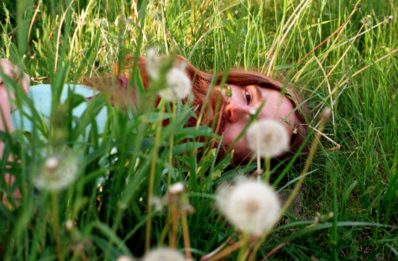 young man long hair red flowing beard hippie dandelions field grass