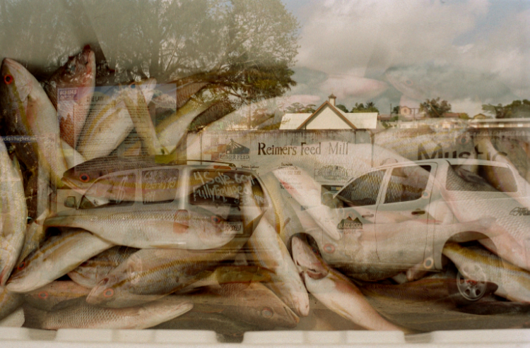 film photograph lomography multiple exposure fish market sky