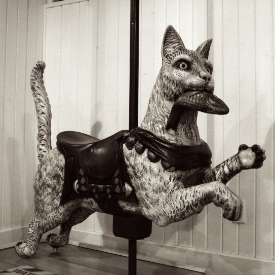 cat creepy ride carousel