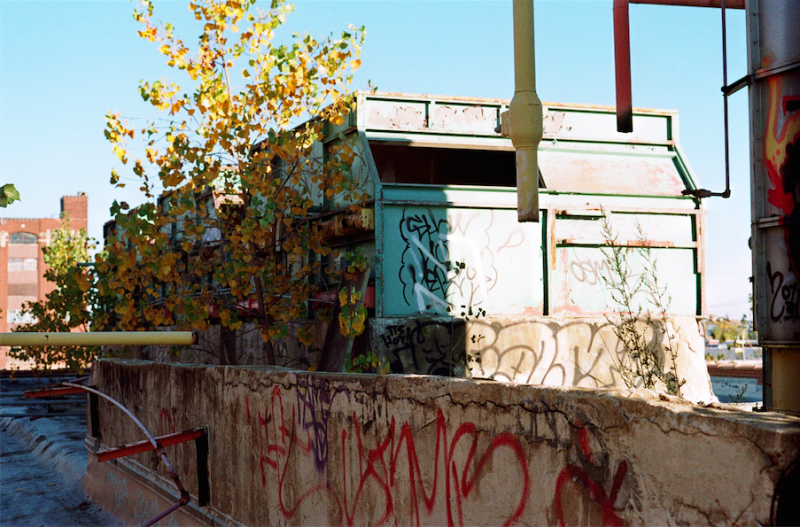 abandoned building film photograph roof graffiti colorful