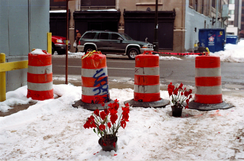 film photograph traffic cones old flowers snow winter