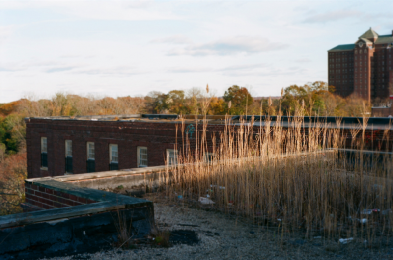 film photography urbex abandoned ruinporn crumbling debris king's park asylum  roof sun glow plants