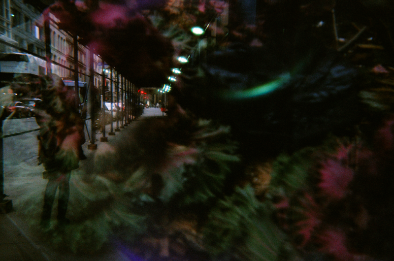 film photograph lomography double exposure toy camera street perspective sidewalk leaves