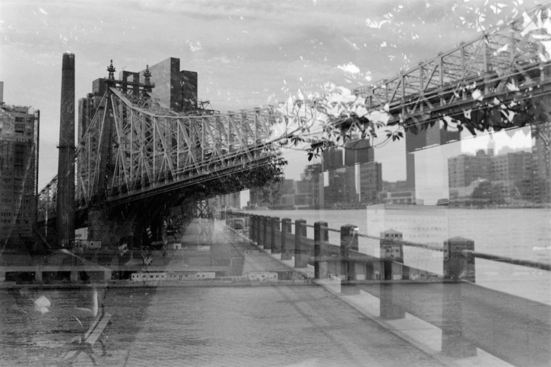 film photography black white nyc roosevelt island bridge double exposure lomography multiple leaves
