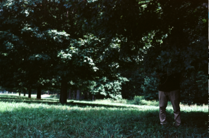 film photograph trees park person man hiding legs surreal