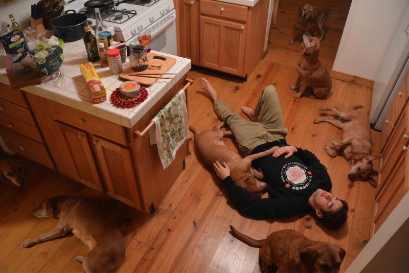 digital photograph doubles surrealism kitchen boy young man lying floor dog mix rhodesian ridgeback beagle mutt
