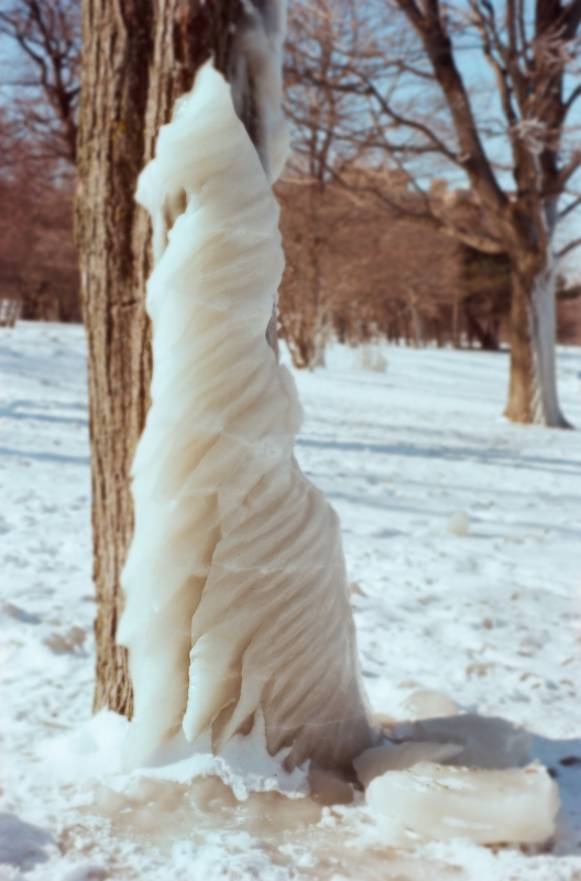 snow winter film photograph ice frozen tree trunk spiral formation