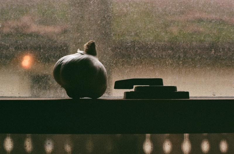 still life shadow silhouette chiaroscuro window lock frame garlic head