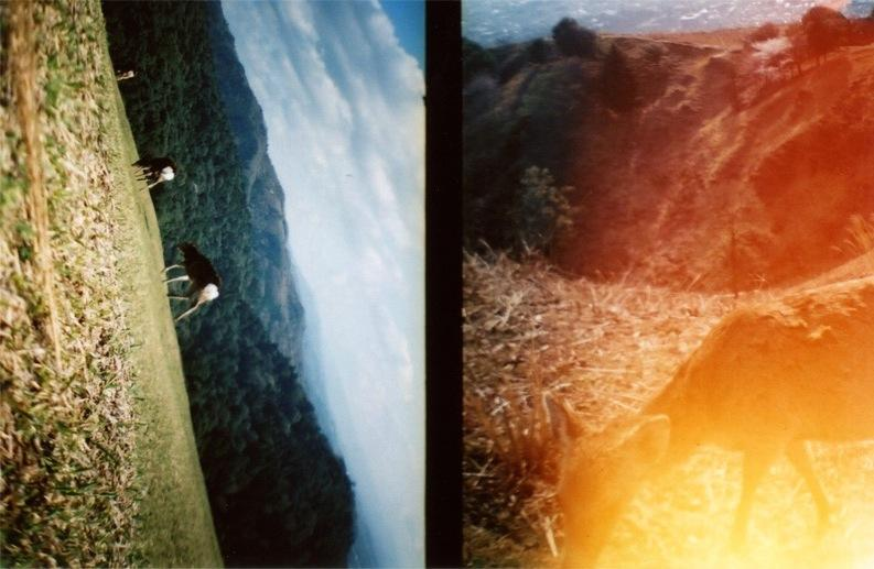 film photo diptych lomography rolling hills mountains deer grazing rainbow light soft boke dreamy fantasy clouds peaceful