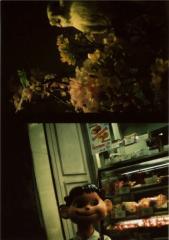 film photograph owl dark black white flowers peko-chan sweets cake mascot lomography