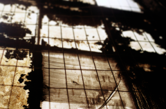 film photography urbex abandoned ruinporn light chiaroscuro window
