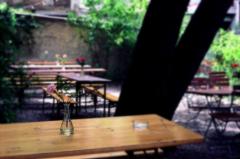 film photograph cafe biergarten beer garden outdoors wooden table summer flowers roses vase peaceful
