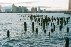 film photography manhattan new york river walk pier posts perspective