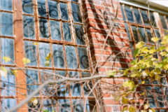 film photography urbex abandoned ruinporn crumbling debris king's park asylum windows dust writing