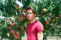 film photography portrait summer portrait young man peach tree