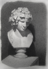 cast drawing charcoal black white tonal bust bacchus