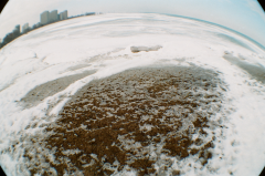 fisheye lens frozen ground lake horizon city