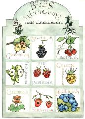 watercolour ink illustration poster wild domesticated pun joke wordplay  funny parody fruit berries blueberries strawberries raspberries gooseberries snowberries cranberries cloudberries cute faces noses ears surreal