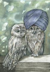 watercolour sketch of two tawny owls, one wearing a blue turban cute whimsical strange funny weird surreal dozing napping sunbathing sunshine dappled texture stylized feathers