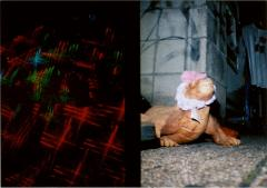 film photographs of lights and a lizard sculpture flash texture skin street strange whimsical funny bizarre surreal